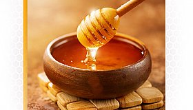 Beekeeping Services & Honey Exporters | Bulk honey providers | Bee by-products
