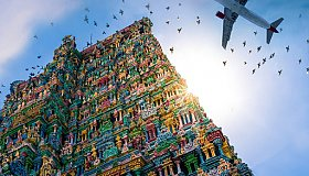 Novus_Immigration_Chennai_grid.jpg