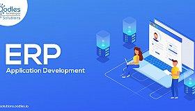 ERP-Application-Development_grid.jpg