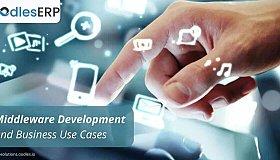 middleware_software_development_grid.jpg