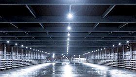 Lighting_Work_grid.jpg