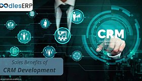 How_Sales_Teams_Can_Benefit_From_Custom_CRM_Application_Development_grid.jpg