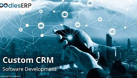 How CRM Software Development Helps Reduce Operational Costs