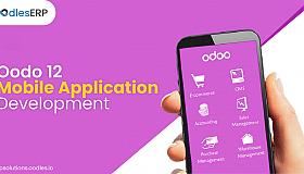 Mobile-ERP-Application-Development_grid.png