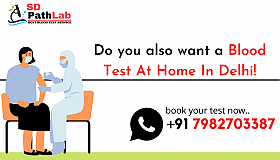 Are_you_looking_Blood_Test_Service_In_Delhi_grid.png