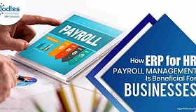 How-ERP-for-HR-and-Payroll-Management-Is-Beneficial-For-Businesses-2_1_grid.jpg