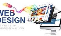 WordPress Developer Dubai  Website Designer Dubai  Web Developer Dubai