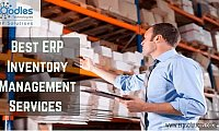 The Importance of ERP Inventory Management Services
