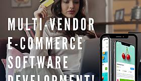 Multi-vendor_E-commerce_software_grid.png