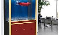 Karis Aquarium for Sale