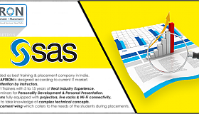 best-sas-training-in-noida_grid.png