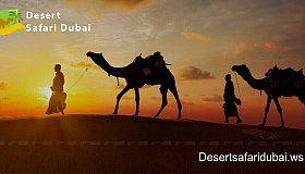 Desert_safari_dubai_grid.jpg