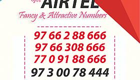 44258729_1998982683495303_5693574953006268416_n_grid.png