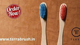 wooden_toothbrush-terrabrush.in_grid.jpg