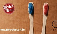 Buy Wooden Toothbrush Online – Terrabrush.in