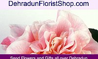 Deliver heartfelt message of true love with Flowers, Gifts and Cake Online