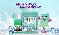 Sugar Free Mint Strips