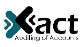 Xact_Auditing_Logo_grid.jpg
