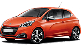 small_Peugeot_208_grid.png