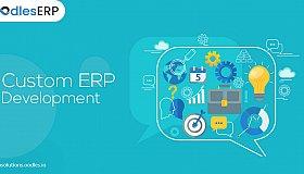 Custom-ERP-development_grid.jpg