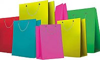 Top Level Paper Bags Manufacturer Company